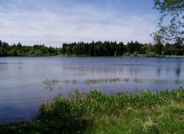 Sportovní rybolov Autokemp Sykovec